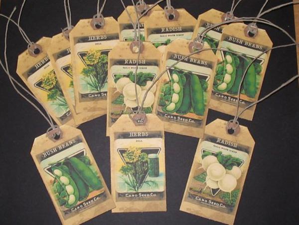 Seed-Tags
