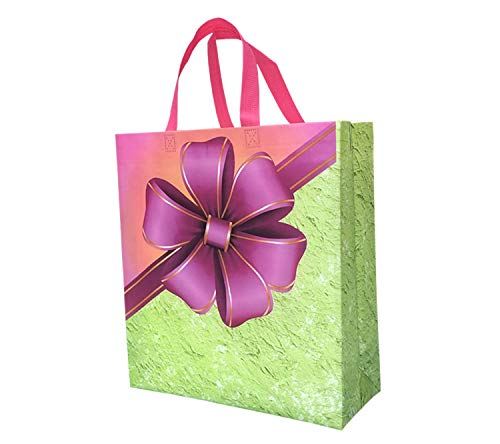 Non Woven Laminated Gift Carry Bags